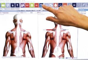Hand auf Display mit Rücken Illustration